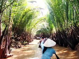 SMO Khám phá xứ Dừa